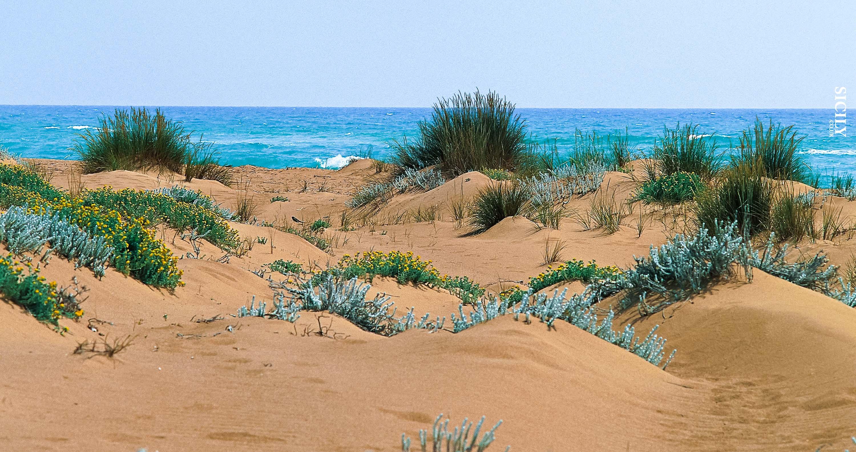 Nature reserve of Foce del Belice - Sicily