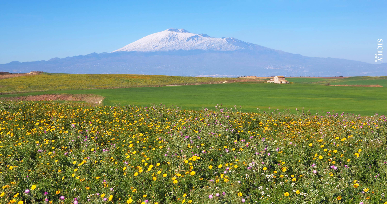 Ramacca - Sicily